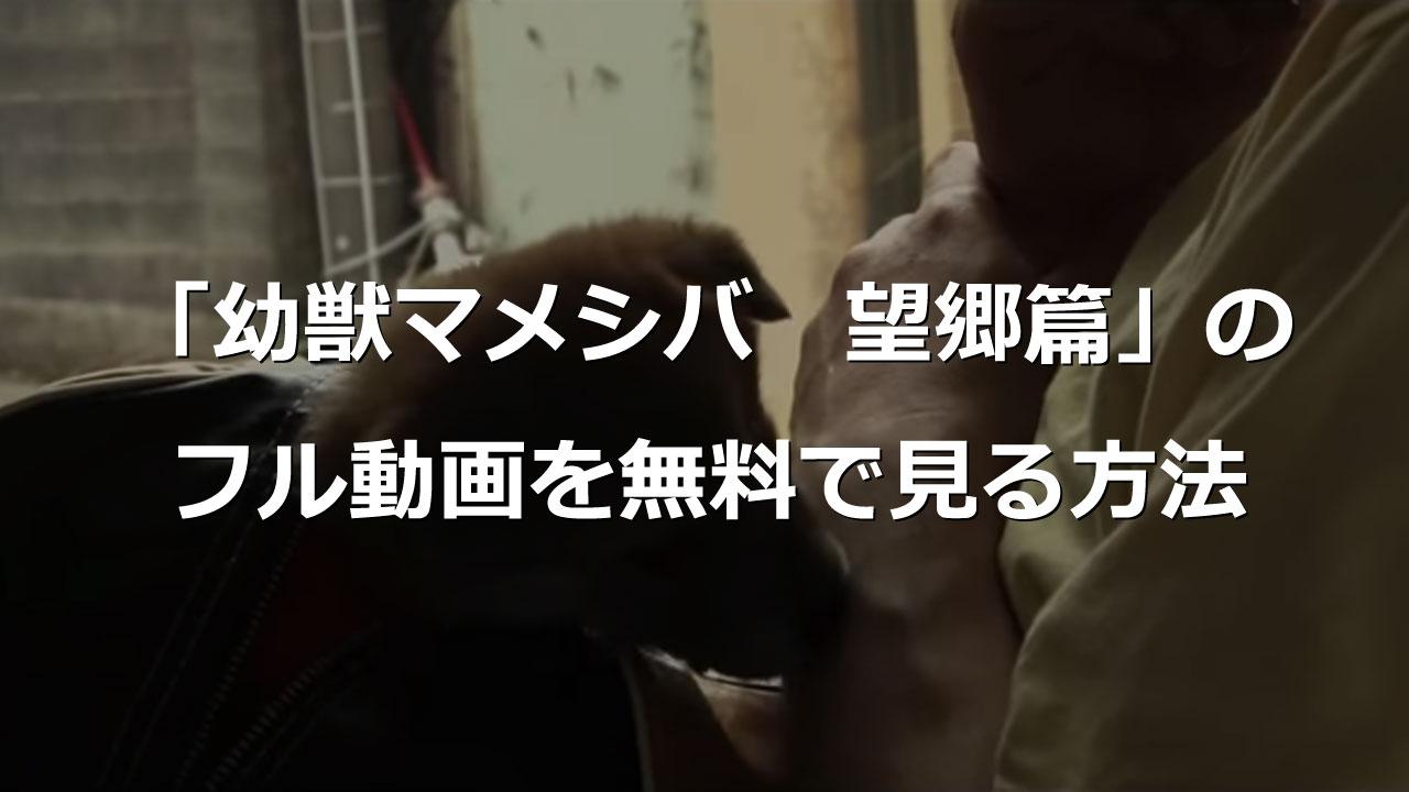 幼獣マメシバ 望郷篇